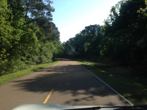 driving north on the Natchez Trace, MS